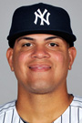 Delin Betances 2014